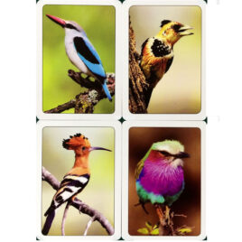 Playing cards: South African Birds, Single pack in tuck box